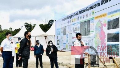 Photo of Presiden RI Bersama Menteri LHK, Tinjau Pertanian DiHumbang Has Sumut
